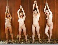 Multiple Girls in Bondage